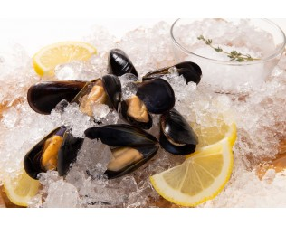 Frozen Black Mussels Whole