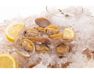 Frozen Cooked Short Neck Clams